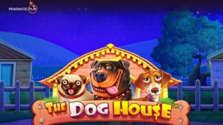 Pragmatic Play announces new slot game The Dog House