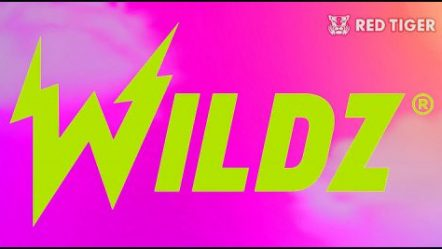 Red Tiger Gaming Limited inks video slot supply deal with Wildz.com