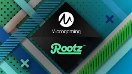 Microgaming grows operator network courtesy of new commercial deal with Rootz Ltd via its Wildz Casino brand