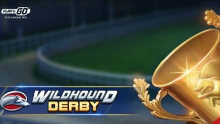 Play'n GO introduces new sports-themed video slot Wildhound Derby